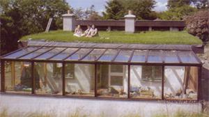Wiseman Designs - Grass Roof